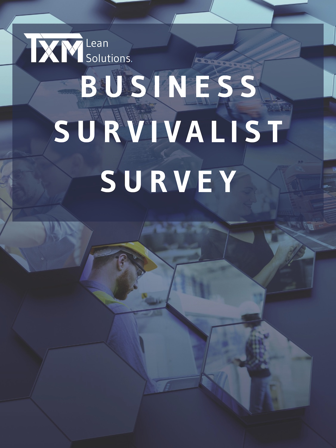 Business Survivialist Survey Cover